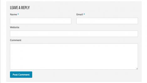 2 Skriv alle dine oplysninger til din blog kommentar