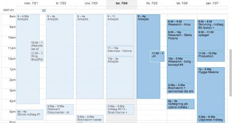 2 Benyttelse af Google kalender