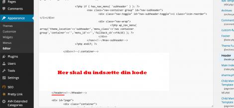 Indsættelse af Google Analytics blog kode i header