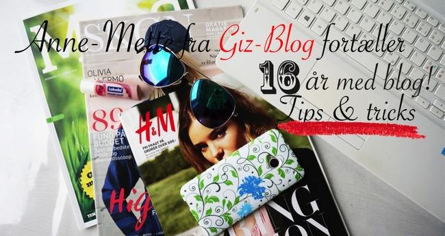Gæsteindlæg – Anne-Mette fra giz-blog