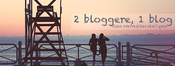 2 bloggere, 1 blog – Disse overvejelser skal I gøre
