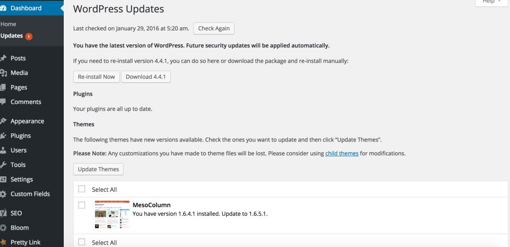 Opdateringer i WordPress