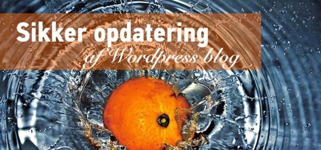 Sikker opdatering af WordPress blog