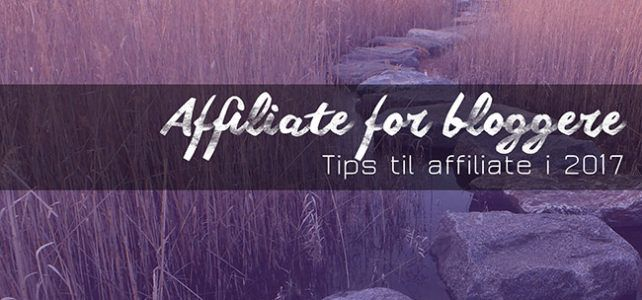 Tips til affiliate for bloggere i 2017