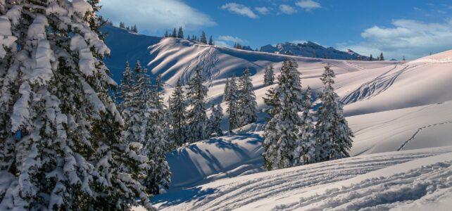 Vinteren er på vej – få styr på dine låse